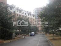 红丰家园 单身公寓 1400/月