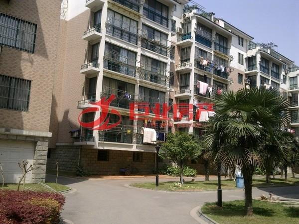 红丰家园10 16F 35.88平 朝南 装修 价41.8万