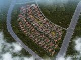 滨江棕榈·十里春晓